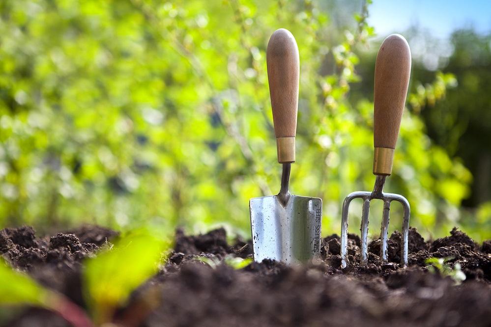 5 livres pour apprendre à jardiner