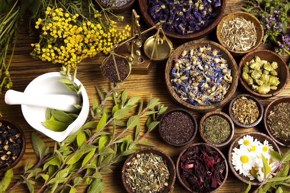 5 livres pour apprendre la naturopathie