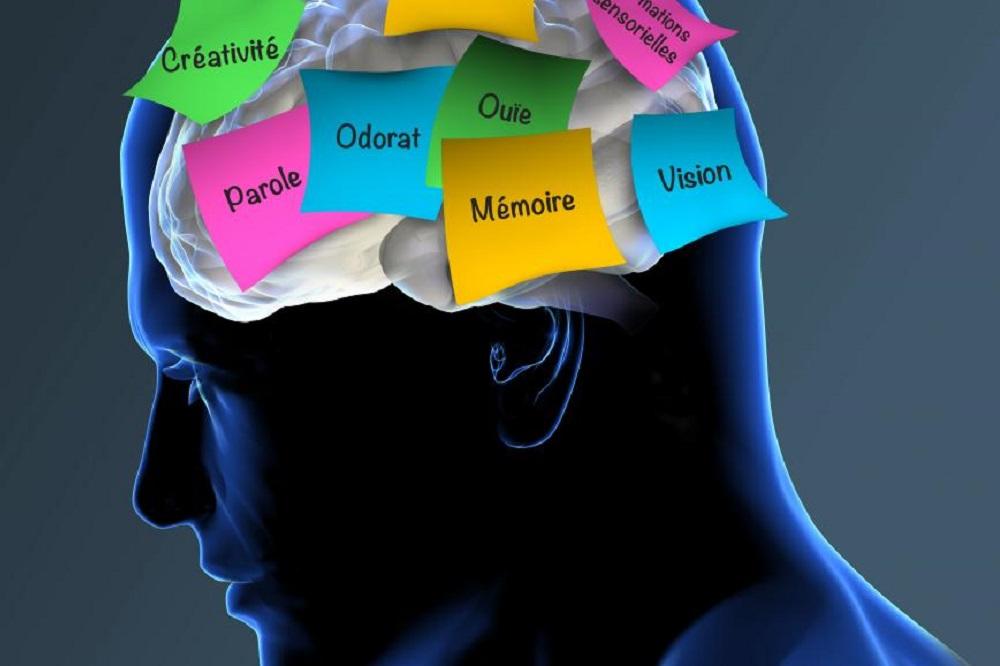 5 livres pour comprendre la maladie d'Alzheimer