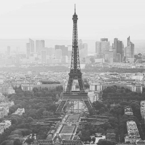 5 livres pour connaître Paris