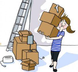 5 livres pour expliquer un déménagement