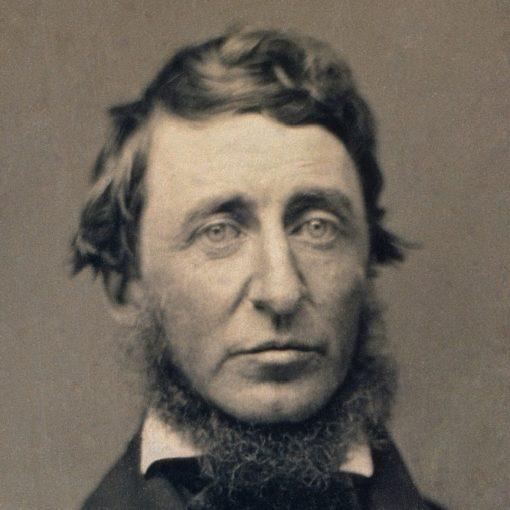 Les 5 meilleurs livres d'Henry David Thoreau