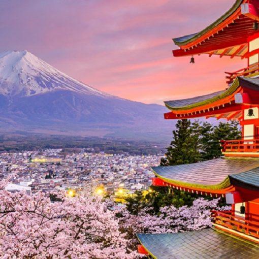 5 livres pour visiter le Japon