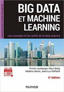 Big Data et Machine Learning - Les concepts et les outils de la data science (Pirmin Lemberger, Marc Batty, Médéric Morel, Jean-Luc Raffaëlli)