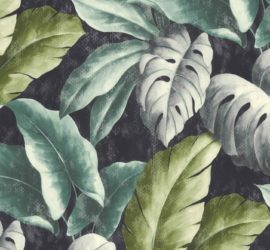 Les 5 meilleurs livres de botanique