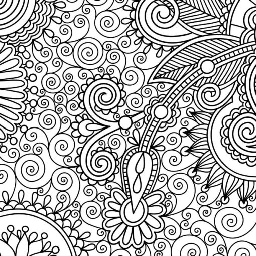 Les 5 meilleurs livres de coloriage pour adulte