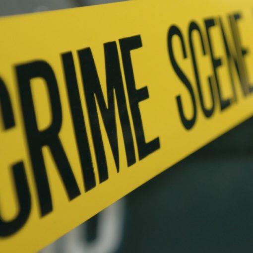 Les 5 meilleurs livres de criminologie