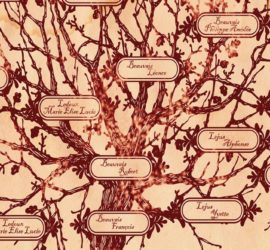 Les 5 meilleurs livres de généalogie