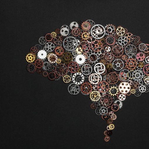 Les 5 meilleurs livres de psychologie cognitive