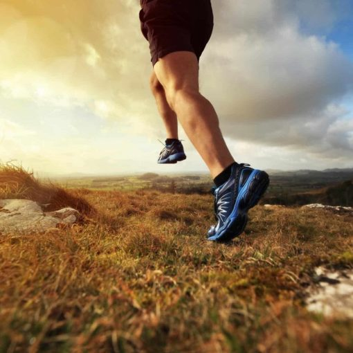 Les 5 meilleurs livres d'entrainement au trail