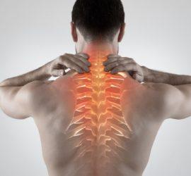 Les 5 meilleurs livres pour guérir un mal de dos