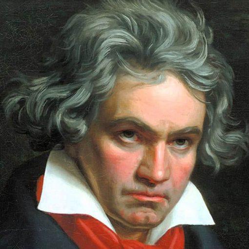 Les 5 meilleurs livres sur Beethoven