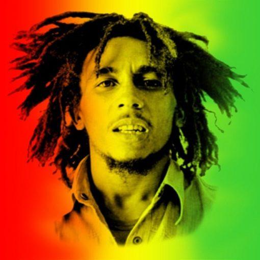 Les 5 meilleurs livres sur Bob Marley