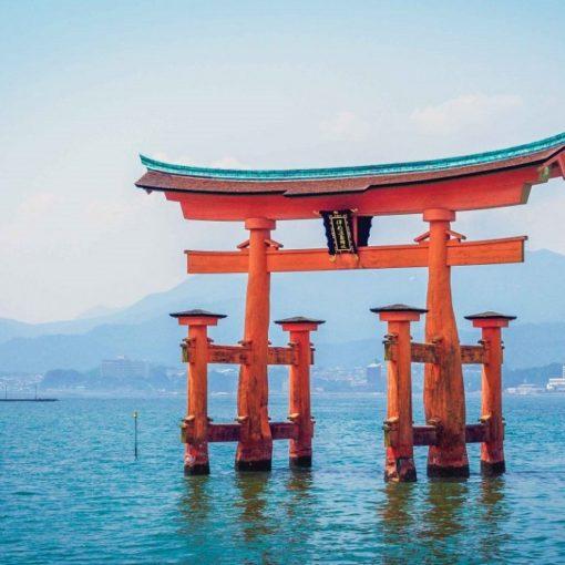 Les 5 meilleurs livres sur la culture japonaise