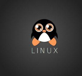 Les 5 meilleurs livres sur l'administration Linux