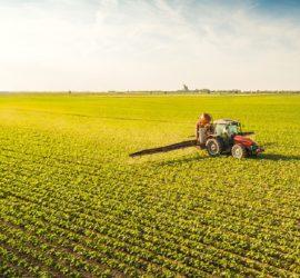 Les 5 meilleurs livres sur l'agriculture