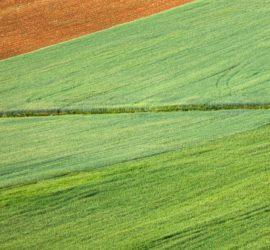 Les 5 meilleurs livres sur l'agronomie