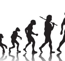 Les 5 meilleurs livres sur l'anthropologie
