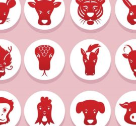 Les 5 meilleurs livres sur l'astrologie chinoise