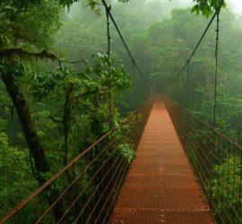 Les 5 meilleurs livres sur le Costa Rica