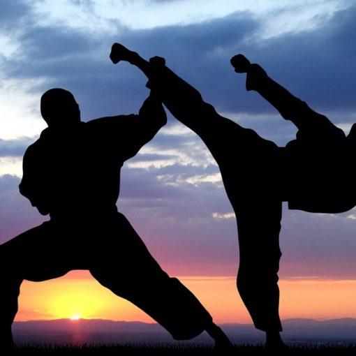 Les 5 meilleurs livres sur les arts martiaux