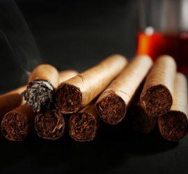 Les 5 meilleurs livres sur les cigares