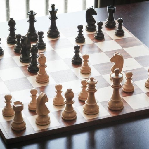 Les 5 meilleurs livres sur les ouvertures aux échecs