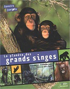 La planète des grands singes (Alexandrine Civard-Racinais, Olivier-Marc Nadel)