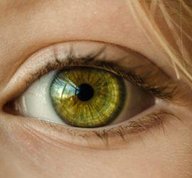 Les 5 meilleurs livres sur l'iridologie