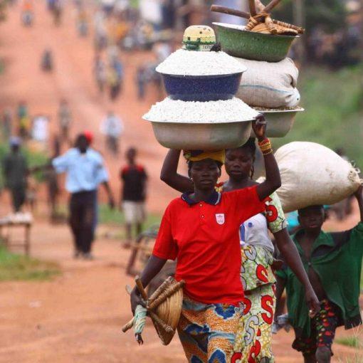 Les 5 meilleurs livres sur la République centrafricaine