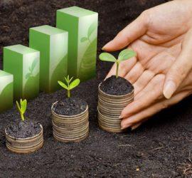 Les 5 meilleurs livres sur la RSE (responsabilité sociétale des entreprises)