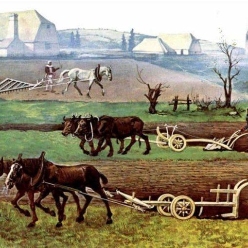 Les 5 meilleurs livres sur l'histoire de l'agriculture