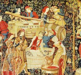 Les 5 meilleurs livres sur l'histoire du vin