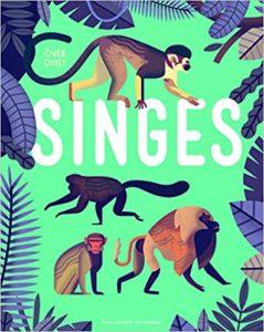 Singes (Owen Davey)