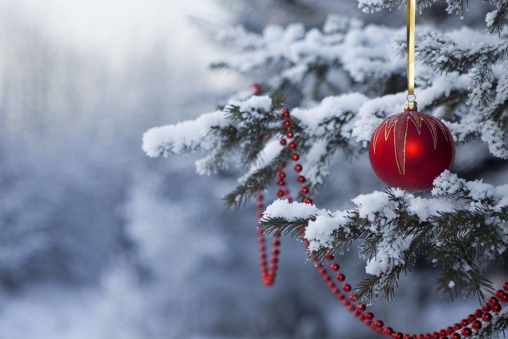 5 excellents livres à offrir à Noël (idées cadeaux)