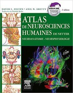 Atlas de neurosciences humaines de Netter (David Felten)