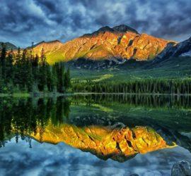 Les 5 meilleurs livres de grands espaces (nature writing)