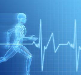 Les 5 meilleurs livres de physiologie humaine