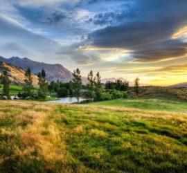 Les 5 meilleurs livres sur la Nouvelle-Zélande