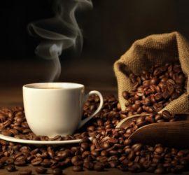 Les 5 meilleurs livres sur le café