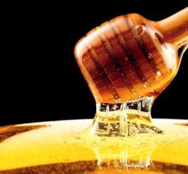 Les 5 meilleurs livres sur le miel