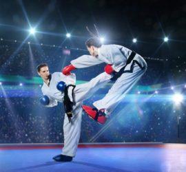Les 5 meilleurs livres sur le taekwondo