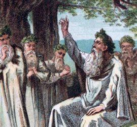 Les 5 meilleurs livres sur les druides