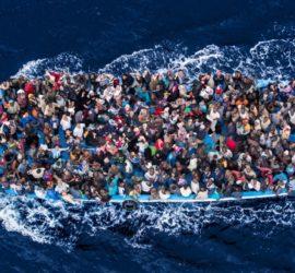 Les 5 meilleurs livres sur les migrants
