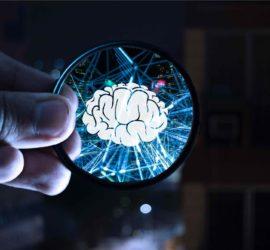 Les 5 meilleurs livres sur les neurosciences