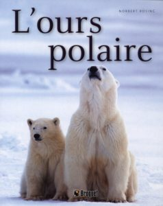 L'ours polaire (Norbert Rosing)